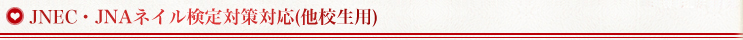 JNEC・JNAネイル検定対策対応(他校生用)